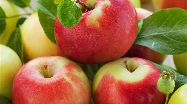 jabolka1