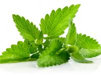 Зачини и билки кои ќе ви го подобрат здравјето