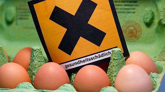 GERMANY DIOXIN EGGS