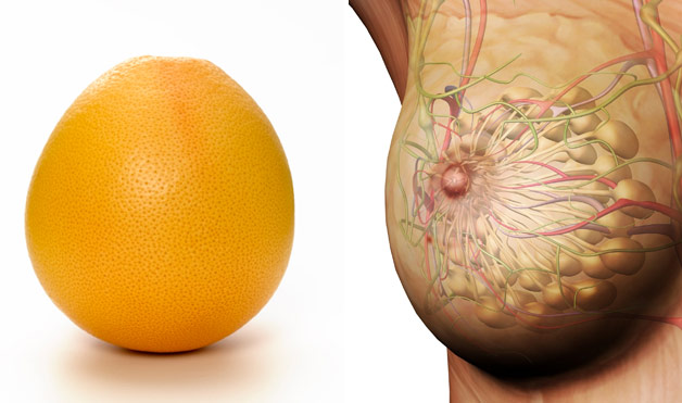 06-Grapefruit-BreastsFoods-That-Look-Like-Body-Parts-1