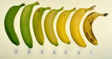Дали знаете која од овие 7 банани е најдобра за вашиот организам?