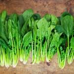 Може да биде многу отровно: Ако го јадете овој зеленчук, ни случајно не му го правете ова