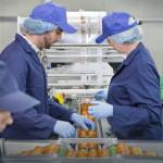 Опаѓа темпото на вработување во ЕУ