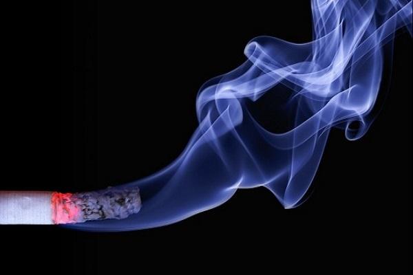 cigar33300